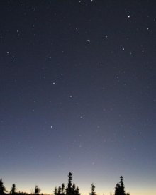 Dark Night