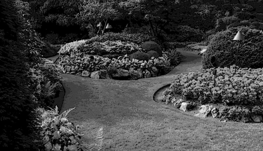 Project Case Study   Landscaping HTML Template on garden park logos, garden club logos, garden logos design, garden nursery logos,